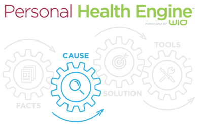 Cause_0_Personal-Health-Engine-Graphic_Facts